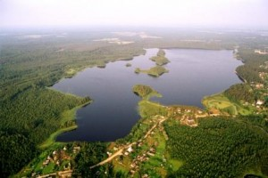 smolensk wetland