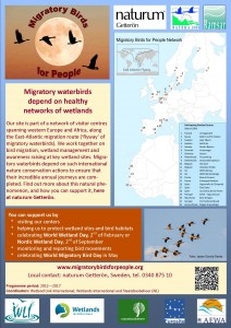 Migratory Birds for People_poster 2014 vers3