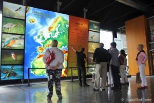 Urdaibai Bird Center displays