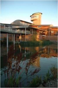 WWT Slimbridge centre