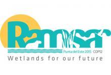 Ramsar COP logo