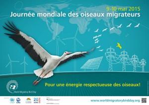 Journée Mondiale des Oiseaux Migrateurs