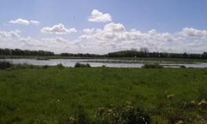 Réserve naturel, Baie de Somme