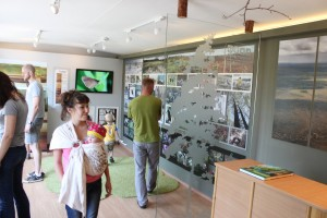 polistovsky display