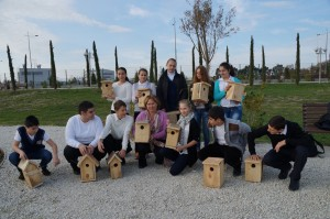 Nest Boxes Competition