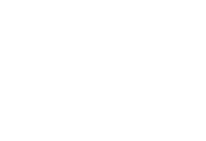 wli_logo_white