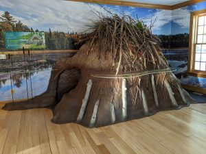 Fredericton beaver lodge display