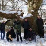 individuals and ancient tree