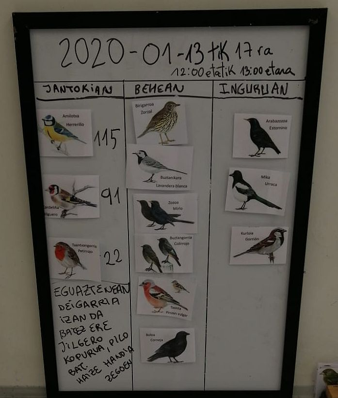 A board showing the day's counts of different songbirds