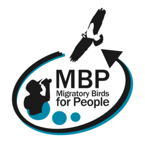 Logo of MBP