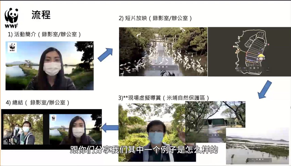 Live stream process: 1 host; 2 pre-recorded video; 3 live from phones in reserve & hide; 4 wrap-up by host