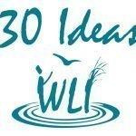 30 Ideas, WLI