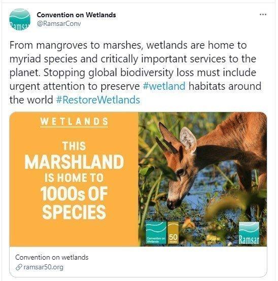 Ramsar50 tweet by Ramsar
