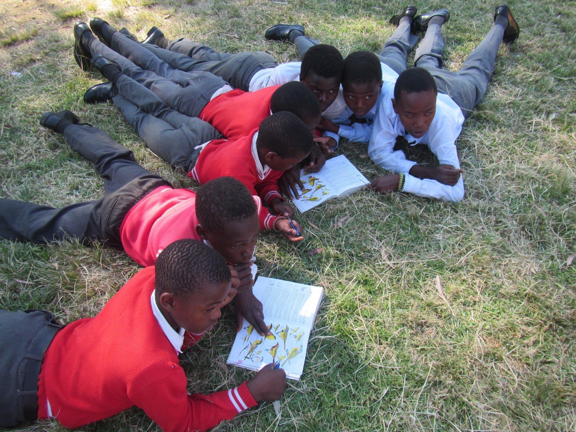 Boys on ground with bird books