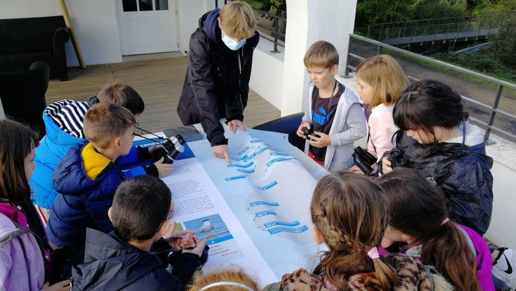 Kids and teacher using map