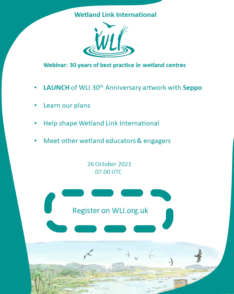 Flyer for WLI English webinar