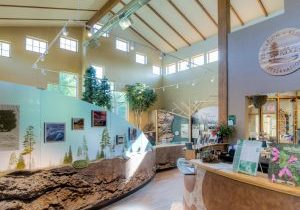 Visitor Centre at the ridges