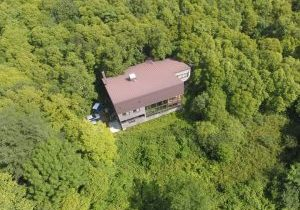 Building in forest from above