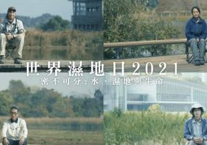 Quad-split screen of individuals sitting in the wetland at Hong Kong, text overlay 'World Wetlands Day 2021' in Chinese