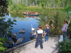 Wye Marsh - Children at Swan Lake