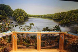 Oak Hammock display