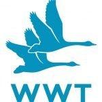 Wetland and Wildfowl Trust logo